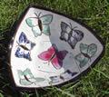 White deep triangular plate with butterflies